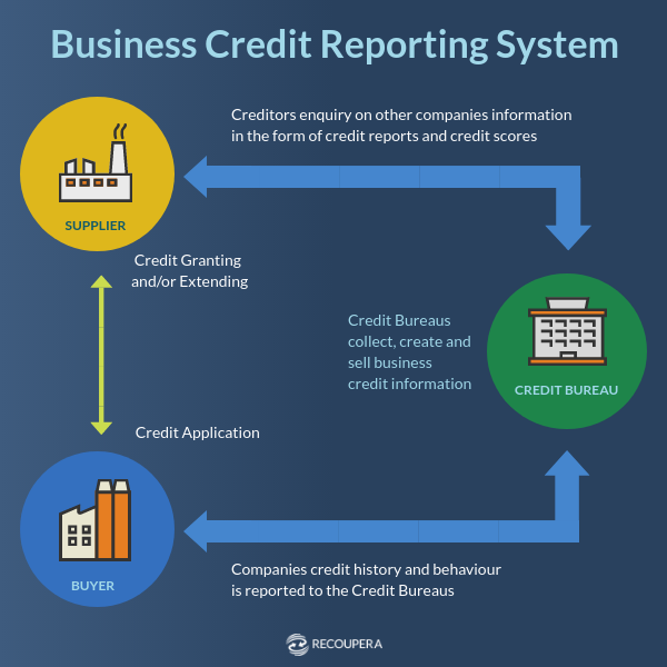 Process of Business Credit Reporting System